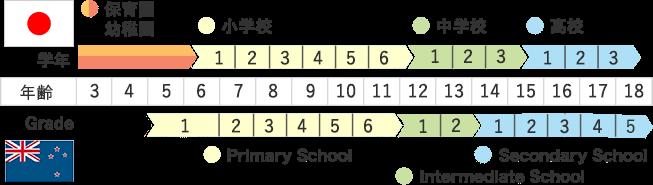 ニュージーランドの学年の教え方